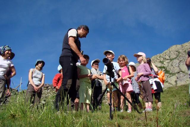 Groups activities