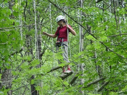 Parcours forestier en hauteur