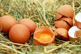egg_chicken_eggs_raw_eggs_eggshell_egg_yolk_bio_589211.jpg